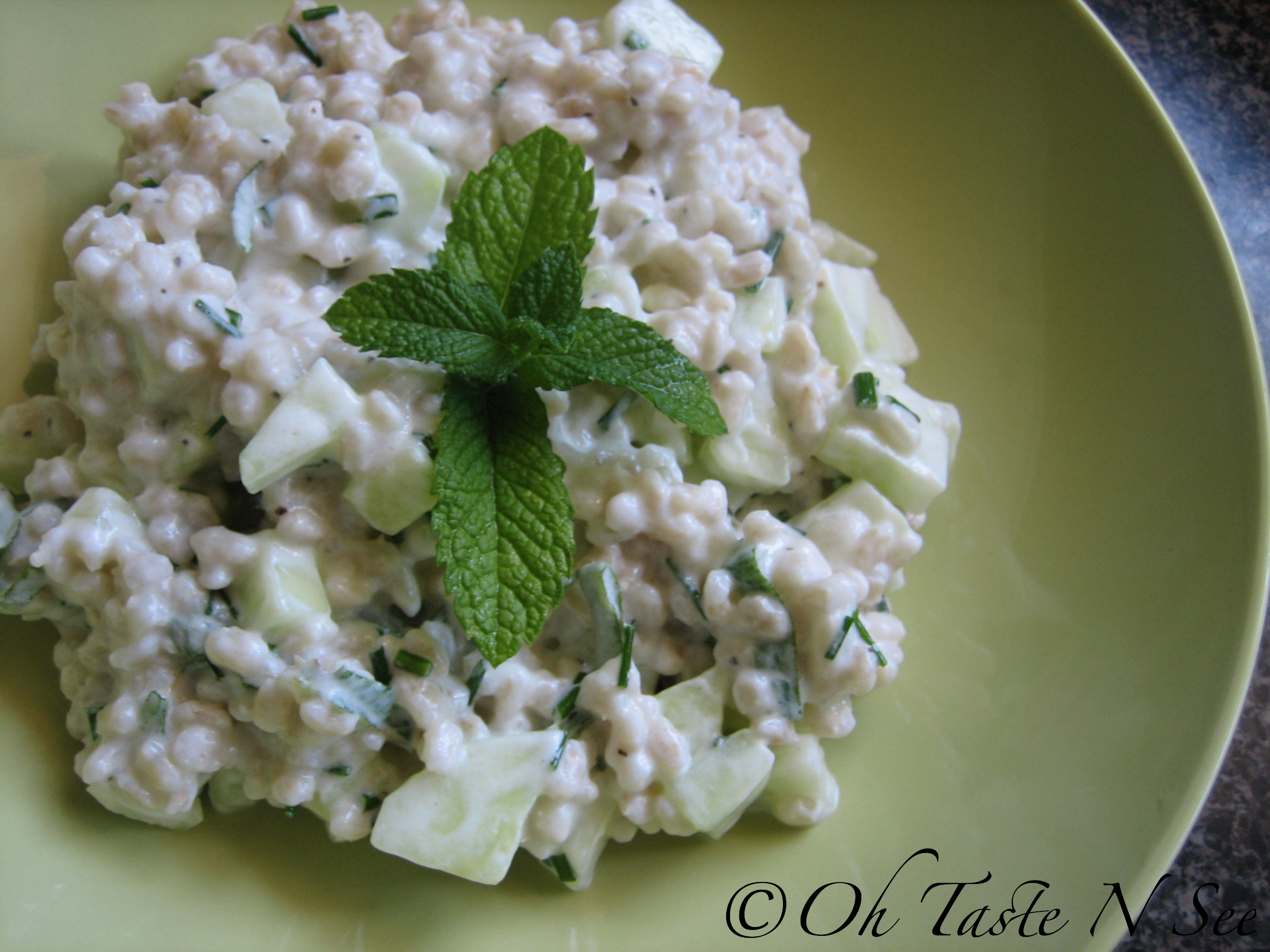 Barley Salad with Cucumber Yogurt Dressing