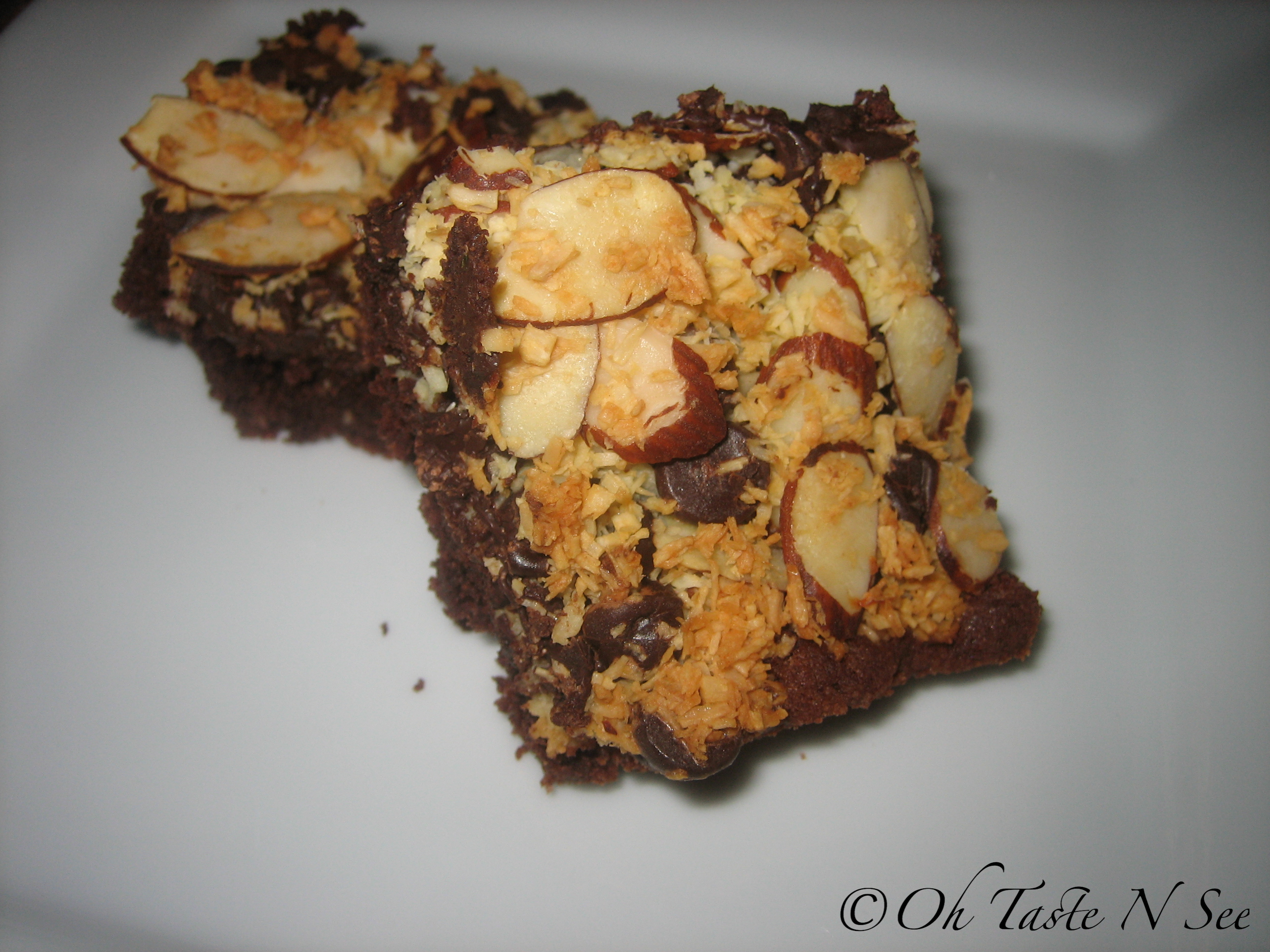 Chocolate Almond Coconut Bars 2