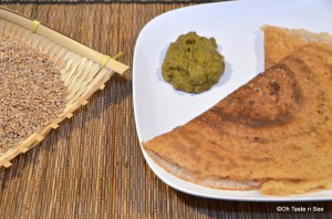 Wheat berry dosa 1