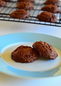 choc_cranberry_cookies3