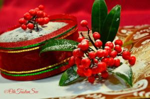 Christmas Special Fruit Cake/ Indian style Plum Cake